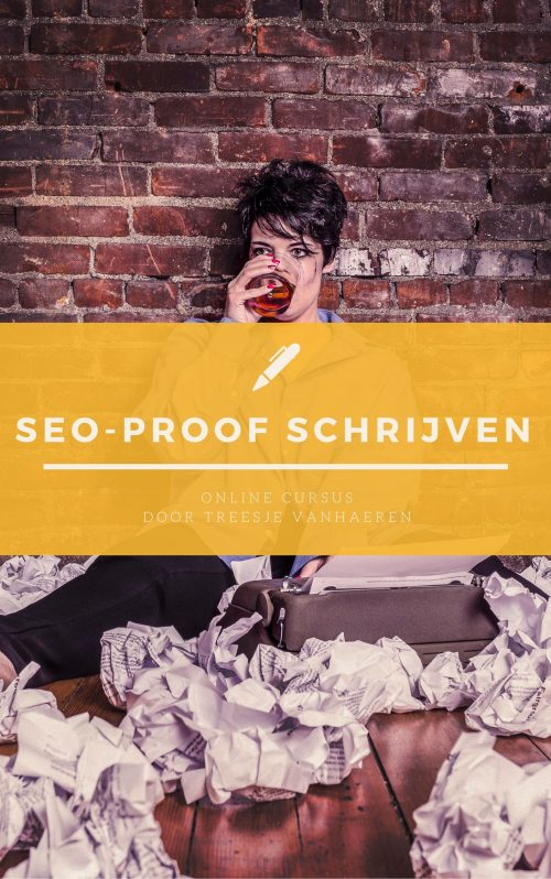 Maak je website en copy SEO-proof! | Online cursus | Product image
