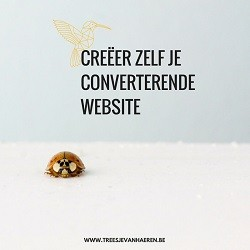 Creer zelf je converterende website