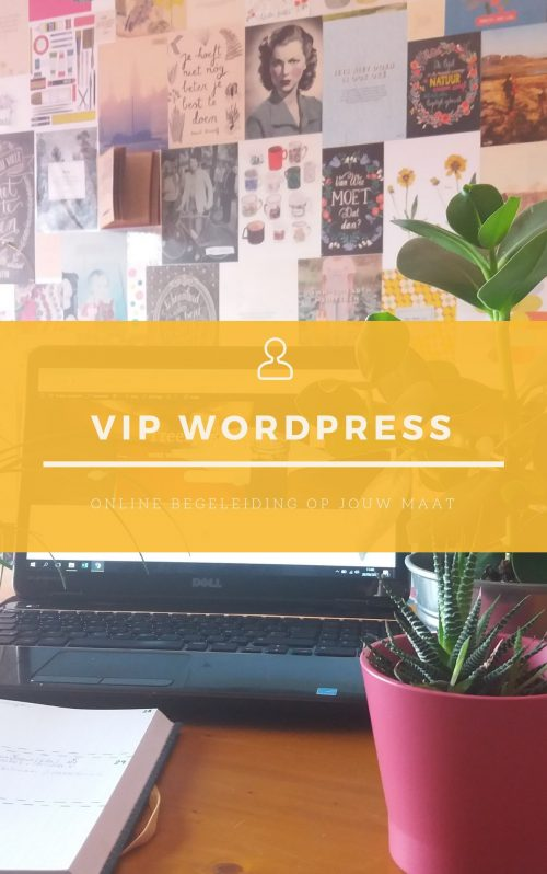 VIP WordPress - product cover